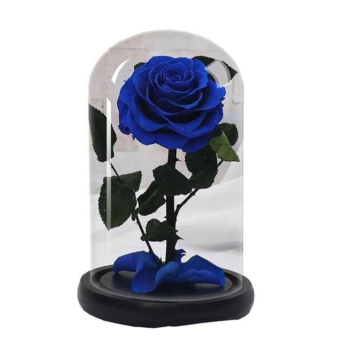 Rosa-Inmortalizada-Azul_Flores-Cali-es-Cali