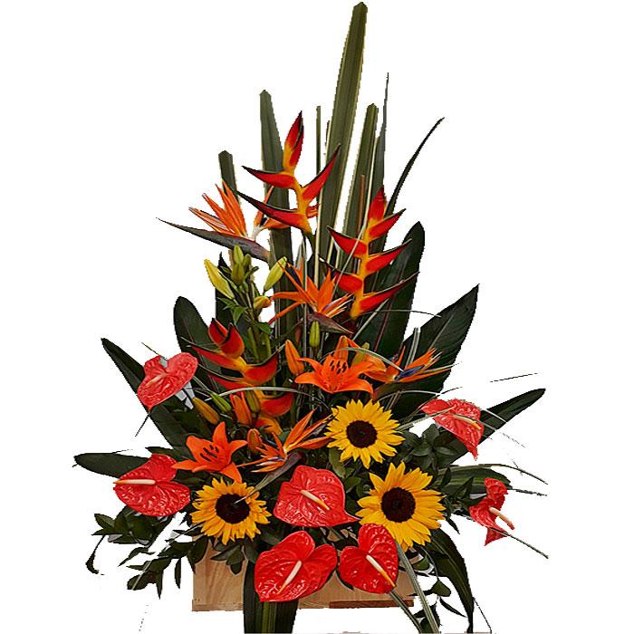 flores-Que-Enamoran_Flores Cali es Cali
