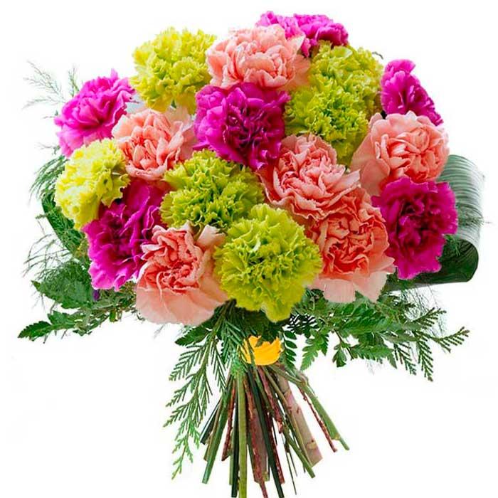 ramo-de-claveles-variados_Flores Cali es Cali